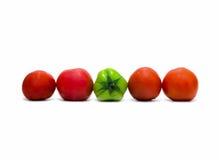 Tomates sur le fond blanc Photos libres de droits