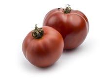 Tomates sur le fond blanc Photographie stock libre de droits