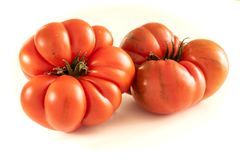 Tomates sur le fond blanc images stock