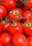 Tomates sur le marché Photo stock