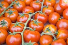 Tomates sur le marché végétal Image stock