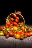 Tomates sur le panier Photos libres de droits