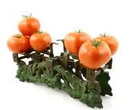 Tomates sur le poids Image stock