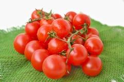 Tomates sur le tissu vert de jute sur le fond blanc Photos libres de droits