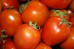 Tomates, Thaïlande. Image libre de droits