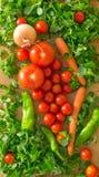 Tomates, tomates de cereza, ensalada, zanahorias, salchichones, cebolla Fotos de archivo libres de regalías