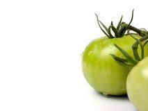 Tomates verdes con el espacio de la copia Foto de archivo libre de regalías