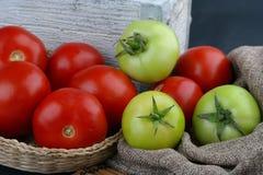 Tomates verdes e vermelhos Fotografia de Stock Royalty Free