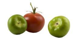 Tomates verdes e vermelhos Imagens de Stock Royalty Free
