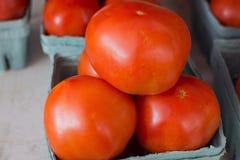 Tomates vermelhos Foto de Stock