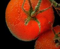 Tomates vermelhos com bolha de ar em uma superfície no fundo preto Foto de Stock Royalty Free