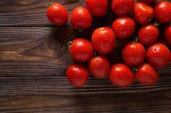 Tomates vermelhos com gotas da água Tomates de variedades diferentes fundo dos omatoes Conceito saudável do alimento dos tomates  Fotos de Stock Royalty Free