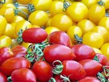 Tomates vermelhos e amarelos 2012 de Tel Aviv Foto de Stock Royalty Free