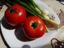 Tomates vermelhos e cebolas verdes Fotos de Stock Royalty Free