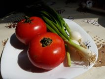 Tomates vermelhos e cebolas verdes Imagem de Stock