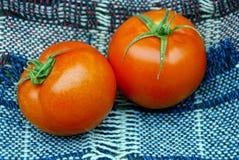 Tomates vermelhos em um lenço de lã imagens de stock