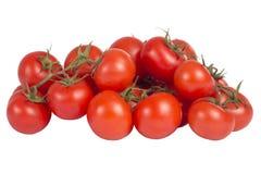 Tomates vermelhos em uma filial foto de stock royalty free