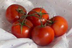 Tomates vermelhos em uma toalha de mesa branca Fotos de Stock