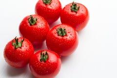 Tomates vermelhos frescos com gotas em um fundo branco Imagem de Stock