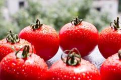 Tomates vermelhos frescos com gotas em um fundo da natureza Foto de Stock