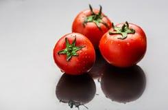 Tomates vermelhos frescos e maduros Imagens de Stock