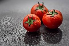 Tomates vermelhos frescos e maduros Imagem de Stock Royalty Free