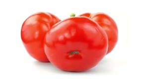 Tomates vermelhos 360 graus que giram sobre o fundo branco Vídeo completo do laço de HD Alimento biológico fresco e saudável vídeos de arquivo