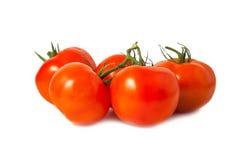 Tomates vermelhos maduros Fotos de Stock