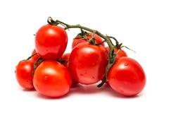 Tomates vermelhos molhados frescos Fotografia de Stock Royalty Free