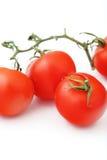 Tomates vermelhos na filial Imagem de Stock Royalty Free