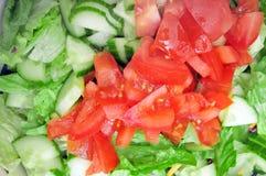 Tomates vermelhos na salada verde foto de stock royalty free