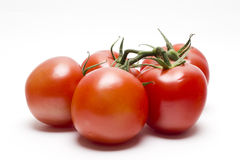 Tomates vermelhos na videira Imagens de Stock Royalty Free