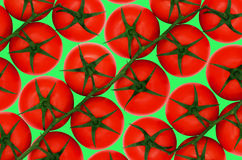 Tomates vermelhos no backround verde foto de stock royalty free