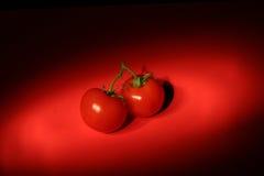 Tomates vermelhos no fundo vermelho Imagem de Stock