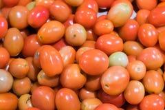 Tomates vermelhos ou de tomates de cereja fundo imagens de stock royalty free
