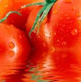 Tomates vermelhos refletidos na água Imagens de Stock Royalty Free