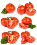 Tomates vermelhos vegetais Fotografia de Stock