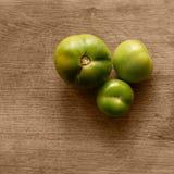 Tomates vertes Image libre de droits