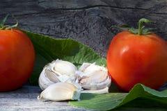 Tomates y ajo Fotografía de archivo libre de regalías