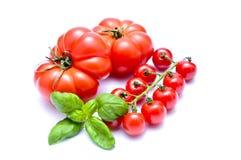 Tomates y albahaca Imágenes de archivo libres de regalías