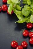 Tomates y albahaca Fotografía de archivo libre de regalías