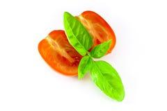 Tomates y albahaca listos para una comida de las pastas Imágenes de archivo libres de regalías