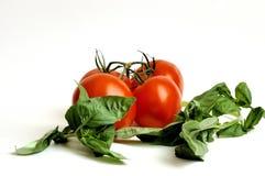 Tomates y albahaca sin procesar Imagenes de archivo