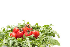 Tomates y arugula en una placa Imagenes de archivo