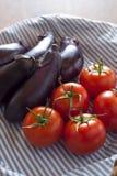 Tomates y berenjenas Imágenes de archivo libres de regalías