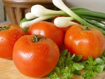 Tomates y cebolla del resorte Foto de archivo libre de regalías