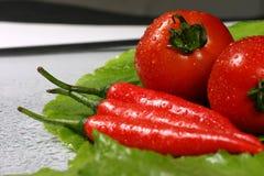 Tomates y chiles frescos en el fondo verde de la colza Foto de archivo libre de regalías