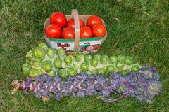 Tomates y coles de Bruselas Fotos de archivo libres de regalías