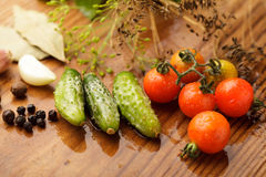 Tomates y cucumgers Imagen de archivo libre de regalías