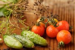 Tomates y cucumgers Imágenes de archivo libres de regalías